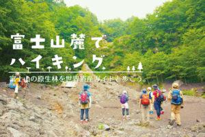 大人気のツアー「富士山麓でハイキング」の募集開始です!