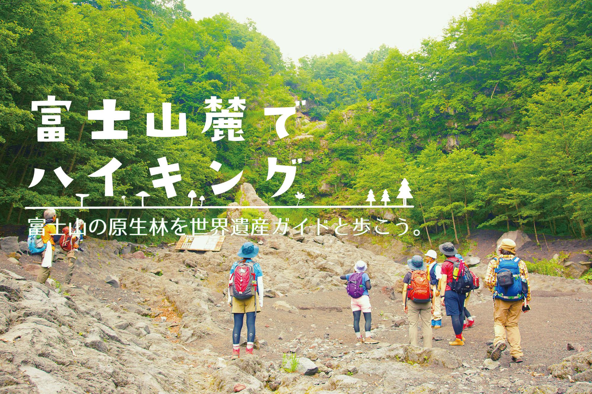 富士山麓でハイキング 富士山の原生林を世界遺産ガイドと歩こう。