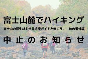 富士山麓でハイキング 富士山の原生林を世界遺産ガイドと歩こう。秋の番外編 中止のお知らせ